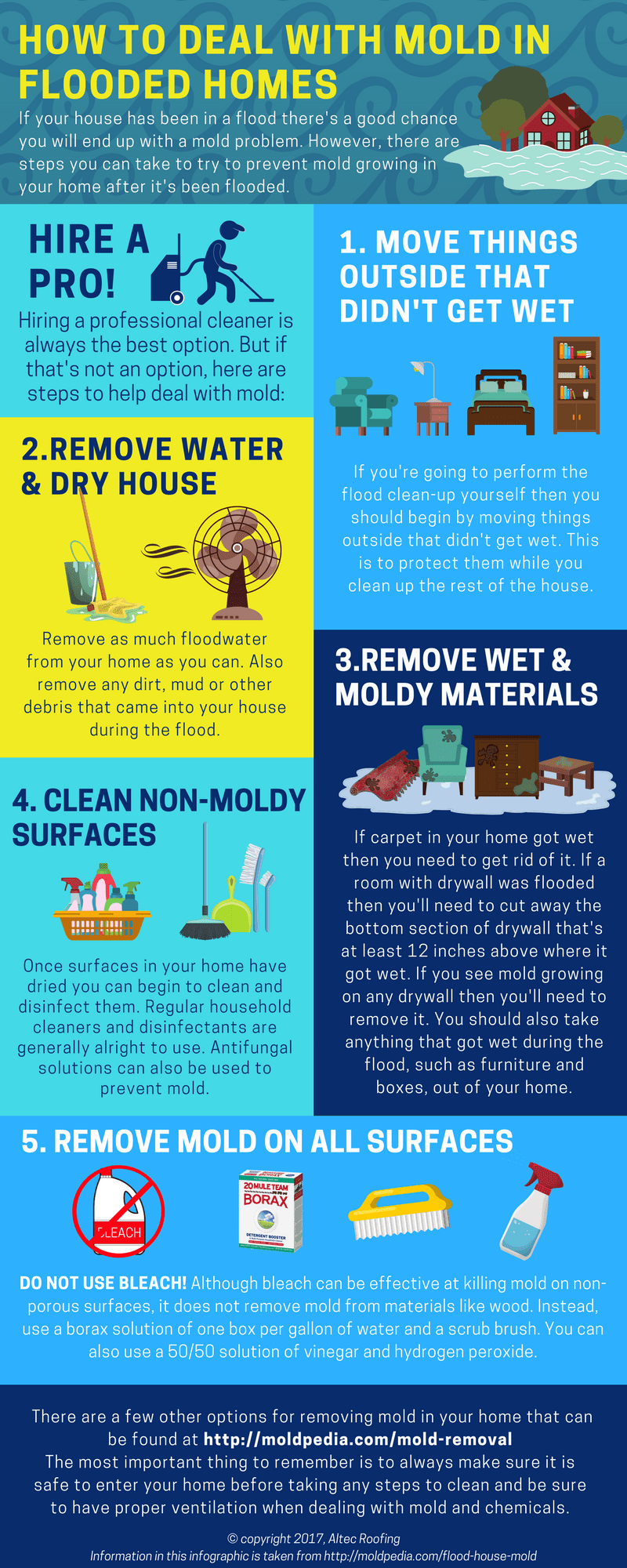 how to deal with mold